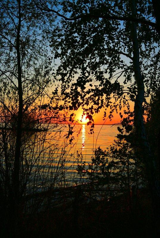 Закат над озером в Сибири - Милешкин Владимир Алексеевич