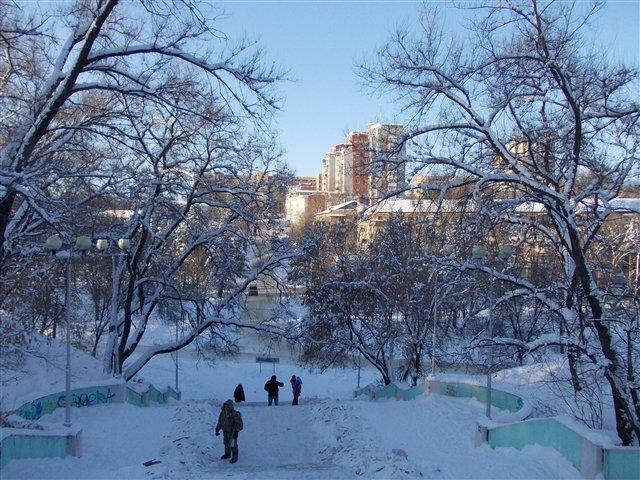 Зима - Павел
