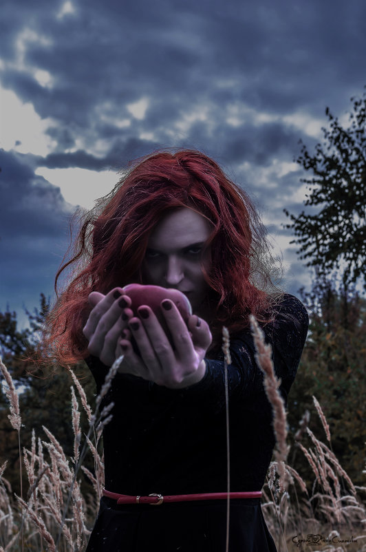 Ведьма - Анна и Сергей Симоновы