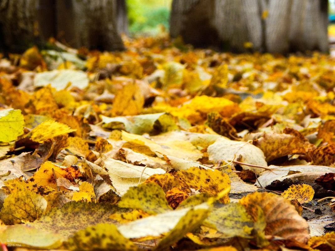 Что такое осень - это ... - Степан Поросков