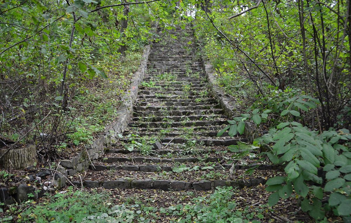 Заброшенная лестница к разрушенному храму. - Александр Морозов
