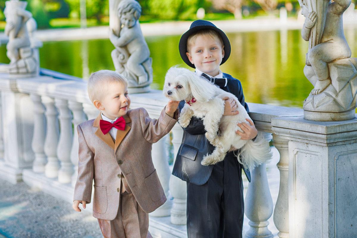 ..о домашних животных в контексте воспитания подрастающего поколения... - Дмитрий Кудрявцев