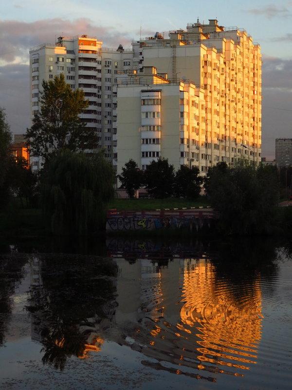 Мир и его отражение - Андрей Лукьянов