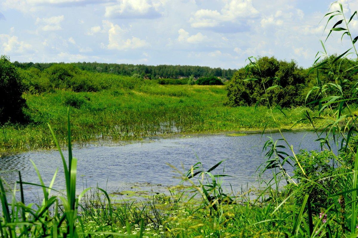 озеро3 - владимир ковалев