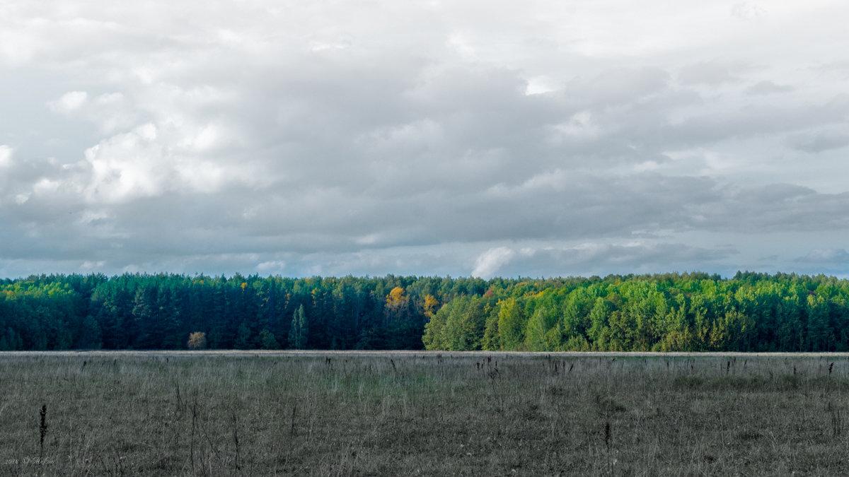 Осени цвета - Микто (Mikto) Михаил Носков