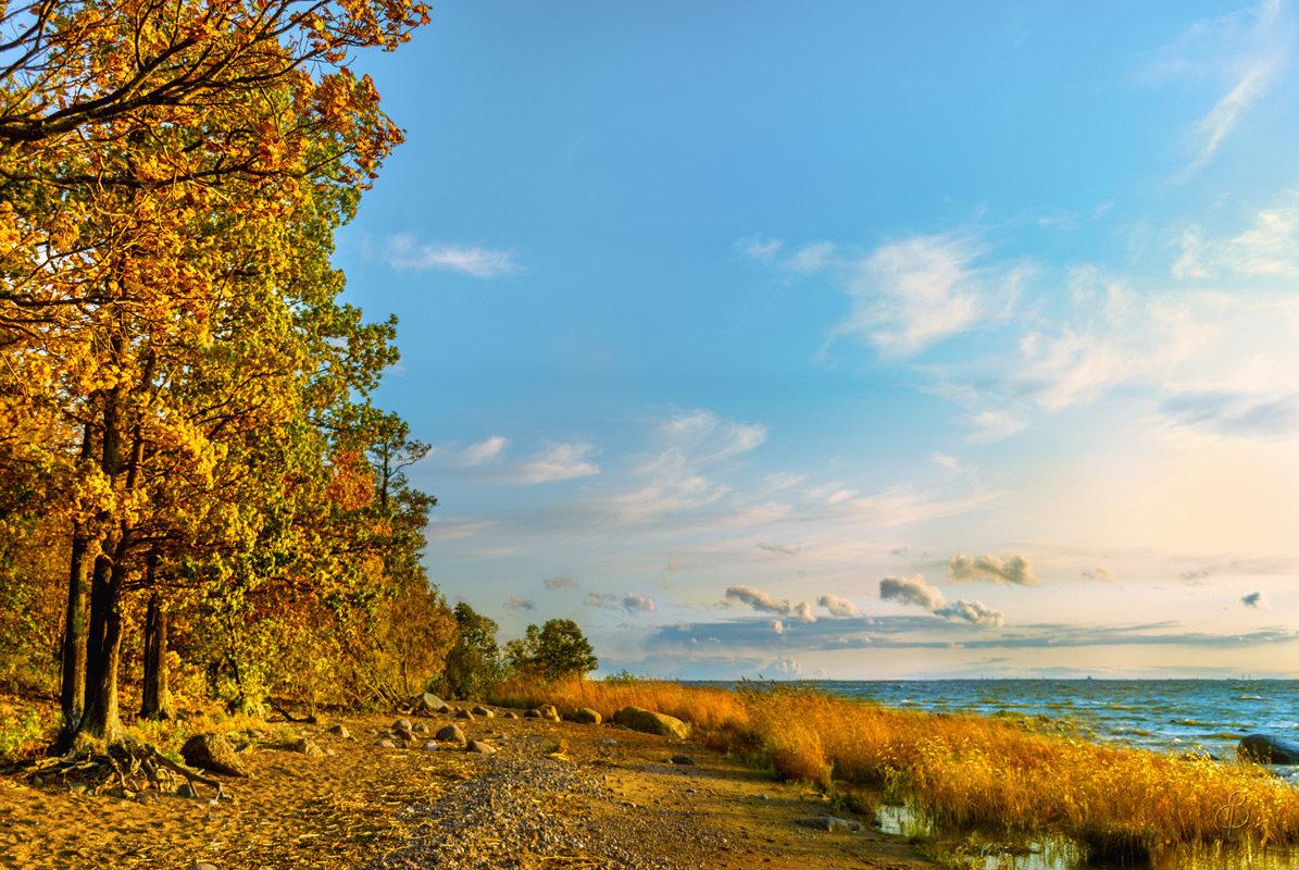Осень на заливе - Виталий
