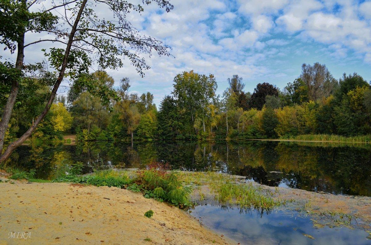 Осень у реки... - *MIRA* **