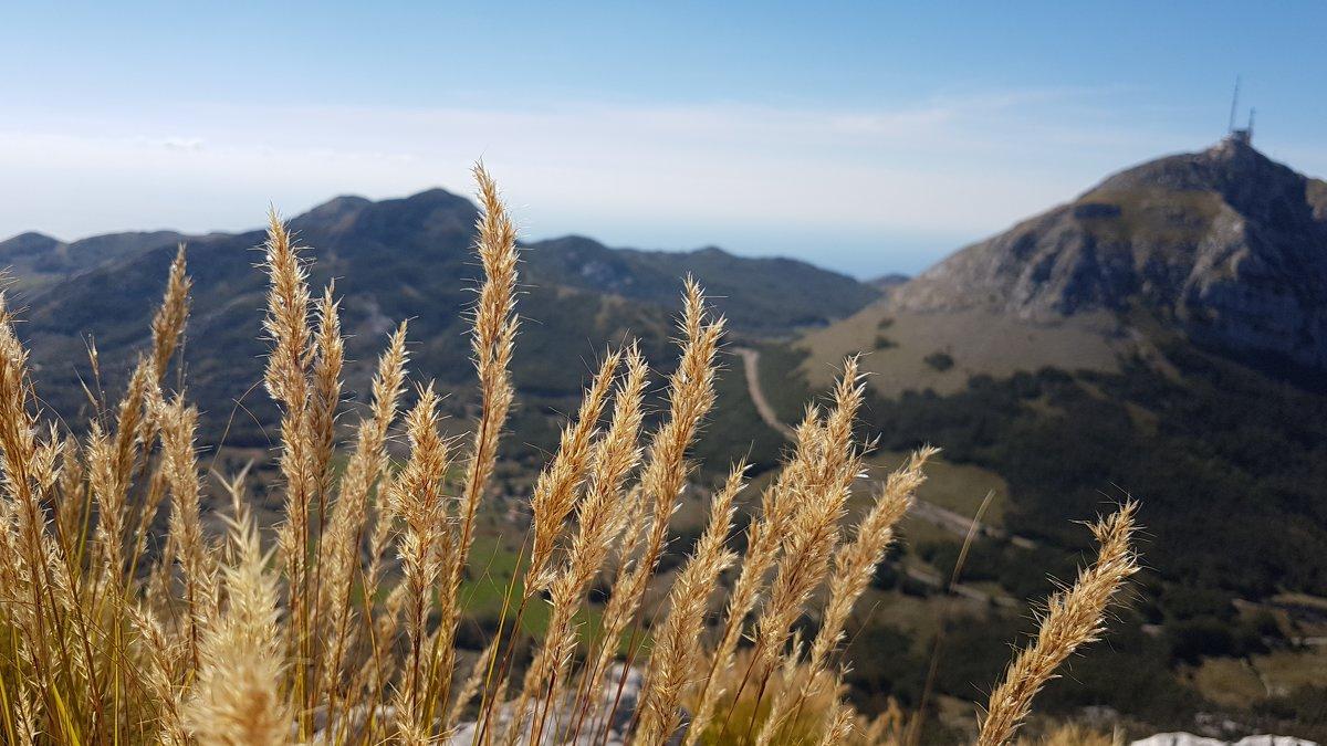 В горах - Julia C.