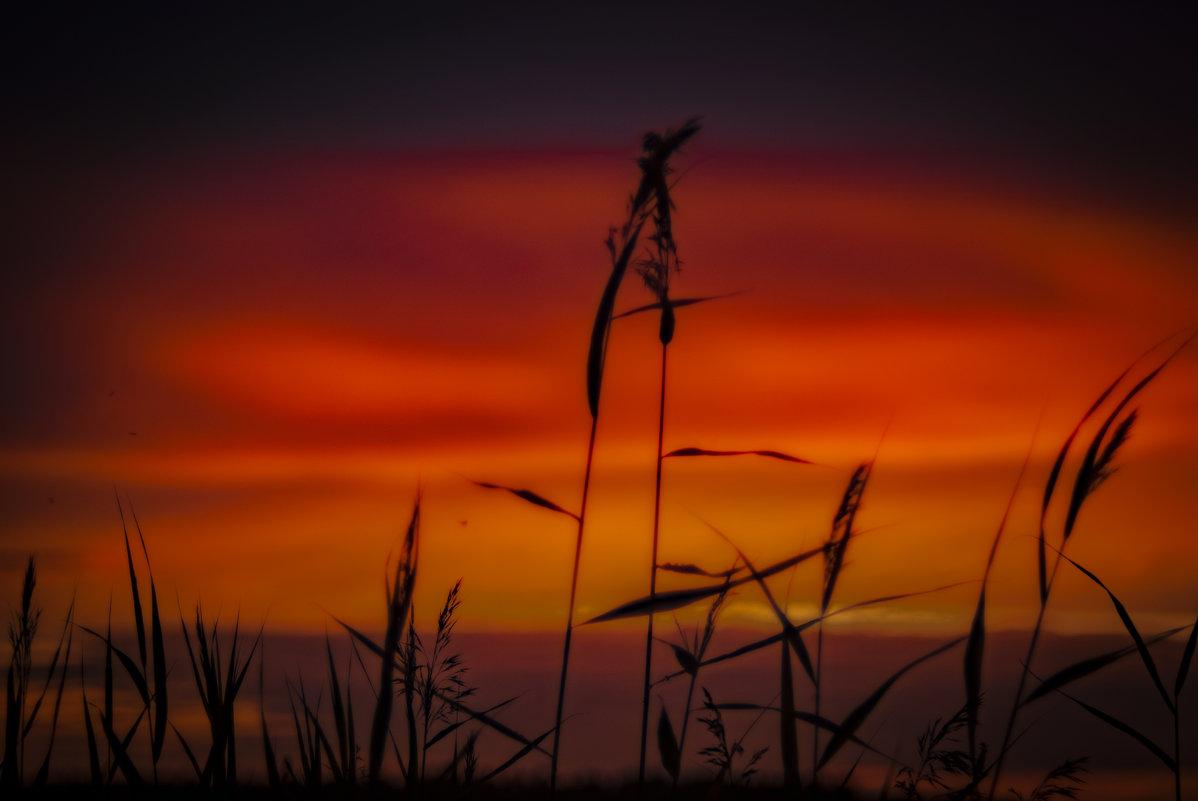 На закате - Дмитрий