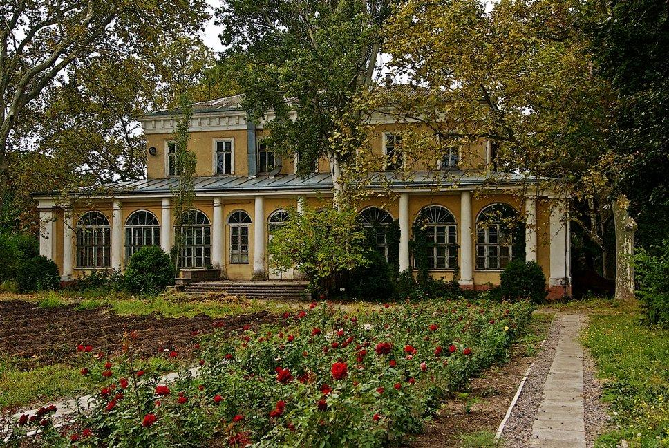 в ботаническом саду - Александр Корчемный