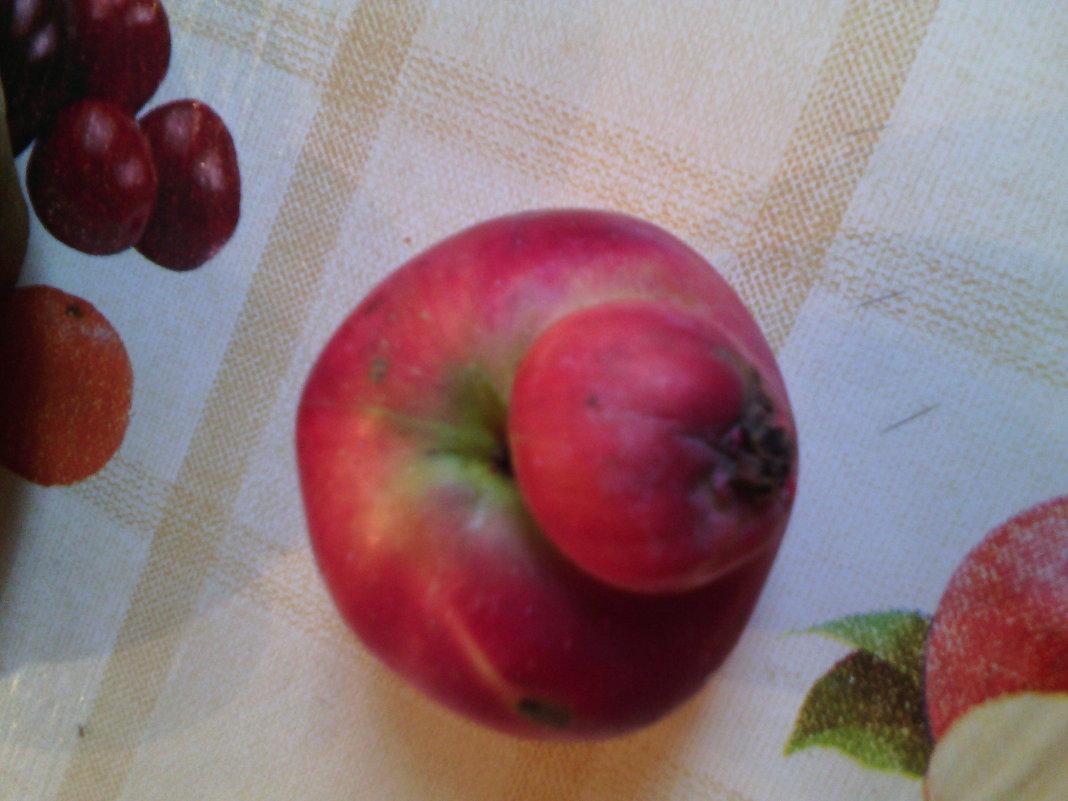 Осень шла, шла, шла и яблоко нашла! - Ольга Кривых