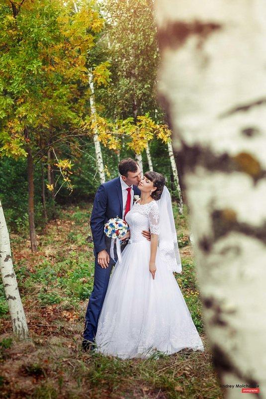 Свадьба Артема и Александры - Андрей Молчанов
