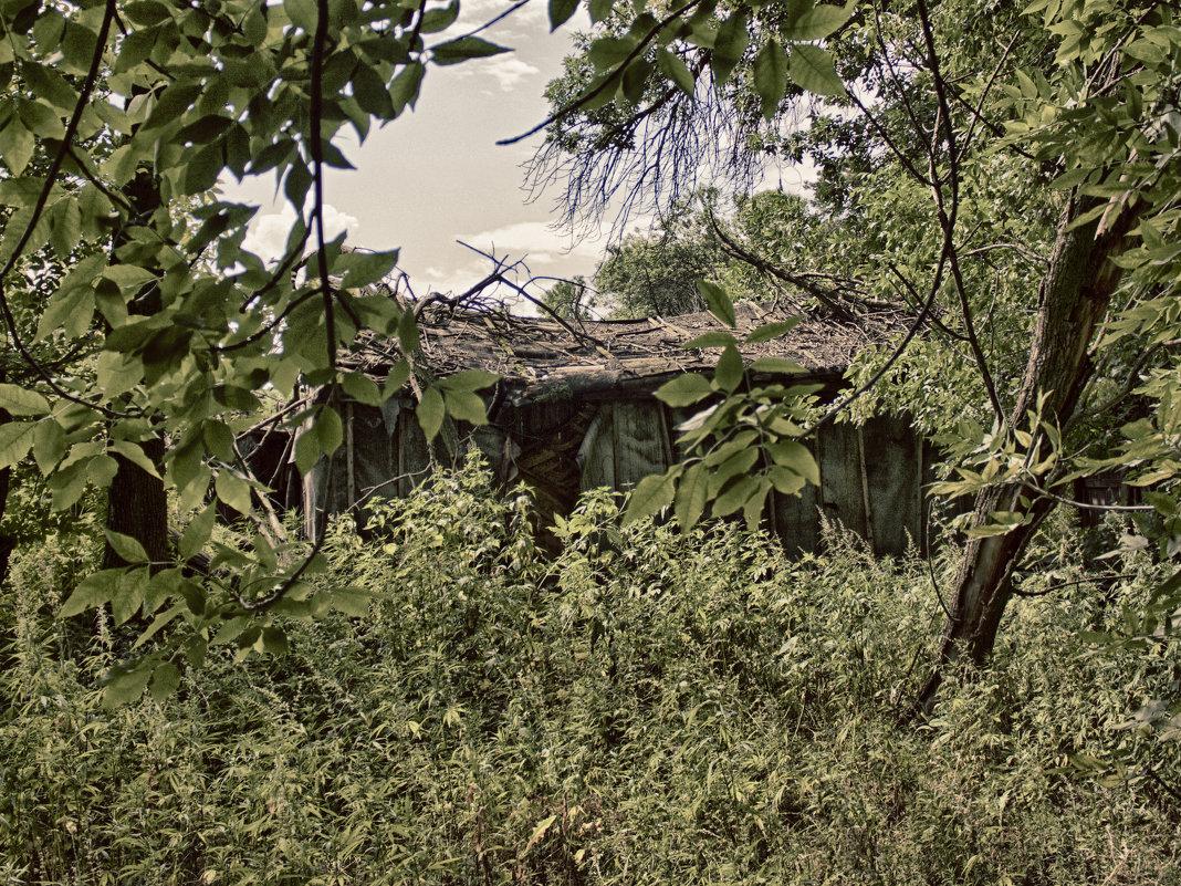 Дом в лесу - Anton Shumaev