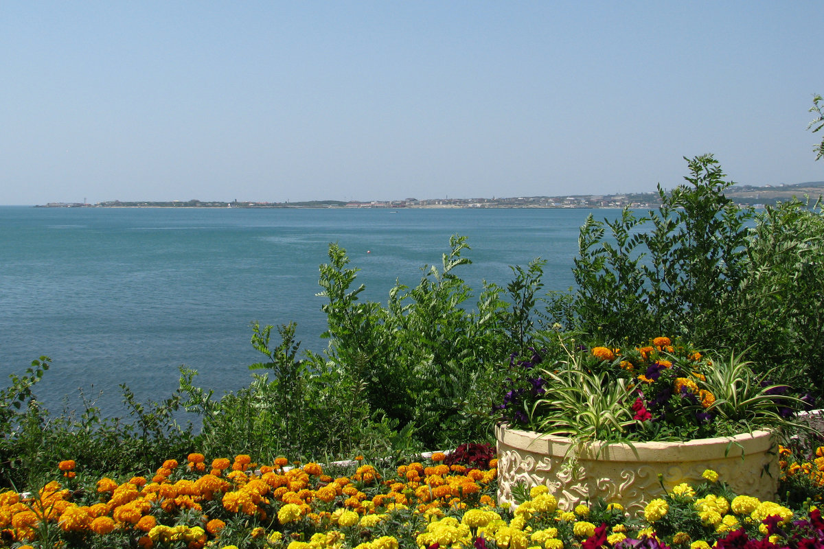 Море - Grey Bishop