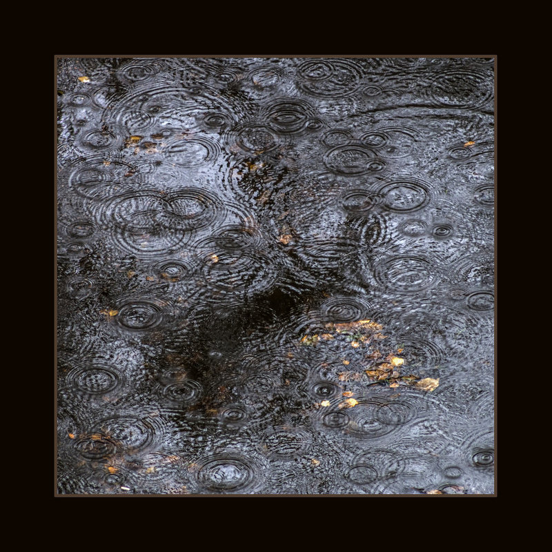 Кружево дождя - shvlad