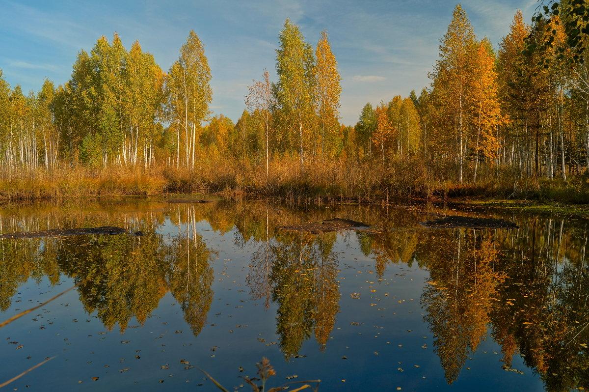 Осенние отражения - Александр Смирнов