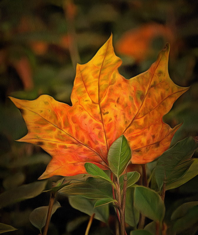 Приходит осень, но память лета остается.... - Tatiana Markova