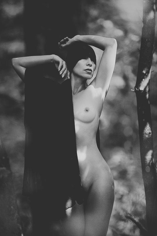 Ты уносишься прочь, унося мою душу , ведьма или ангел, птица или зверь.... - Елена