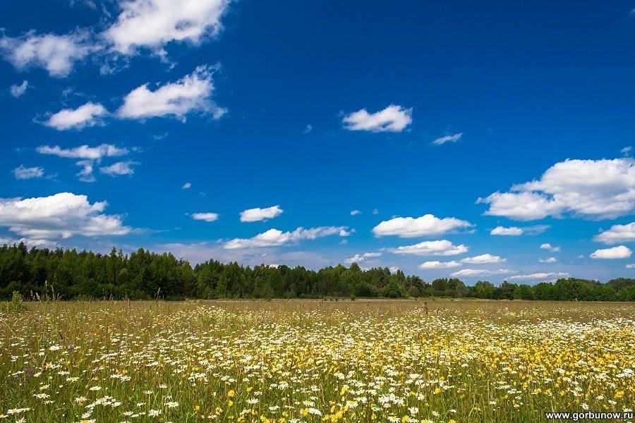 Лето в раю - Александр Горбунов