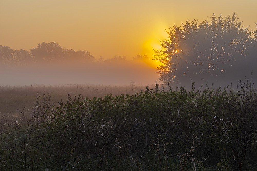 Светлое утро - Сергей Корнев