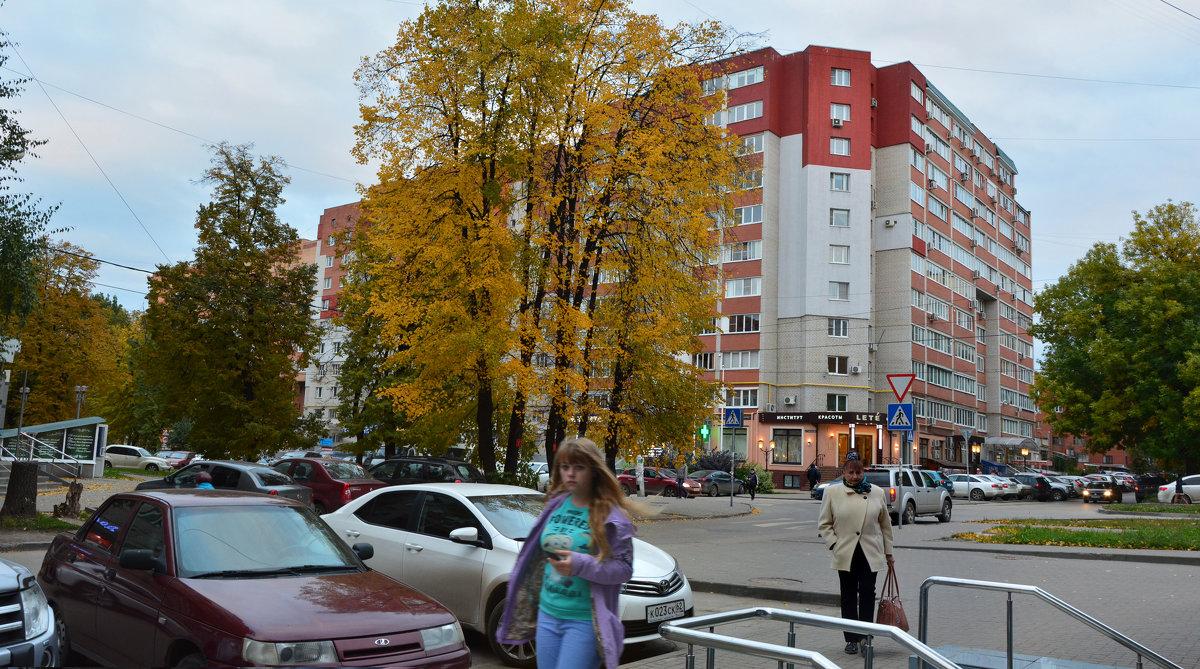 На улице имени поэта (панорама) - Александр Буянов
