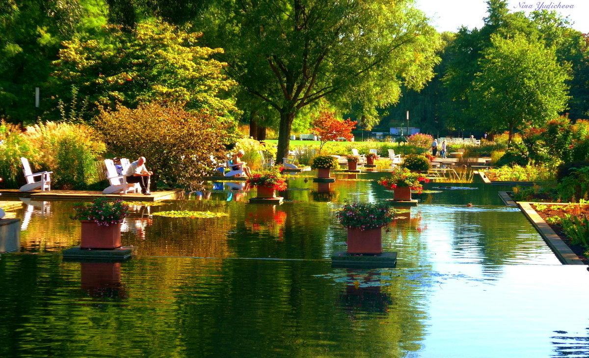 Парк цветов осенью (серия) Отдых у воды - Nina Yudicheva