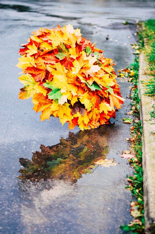 Осенний зонт. - Марина Романова