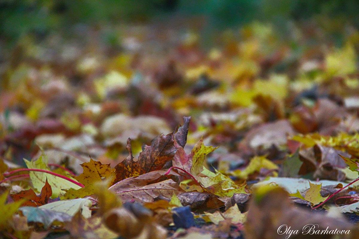 Осень... - Ольга Бархатова