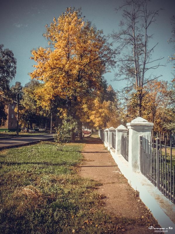 Возле парка - Вячеслав Баширов