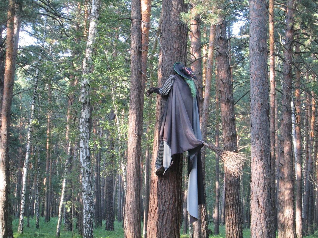 бабка яга не подращитала траекторию - Алексей Дубровин