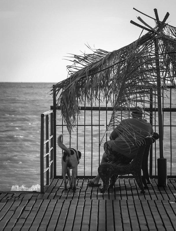 У моря погоды... - Евгения Кирильченко