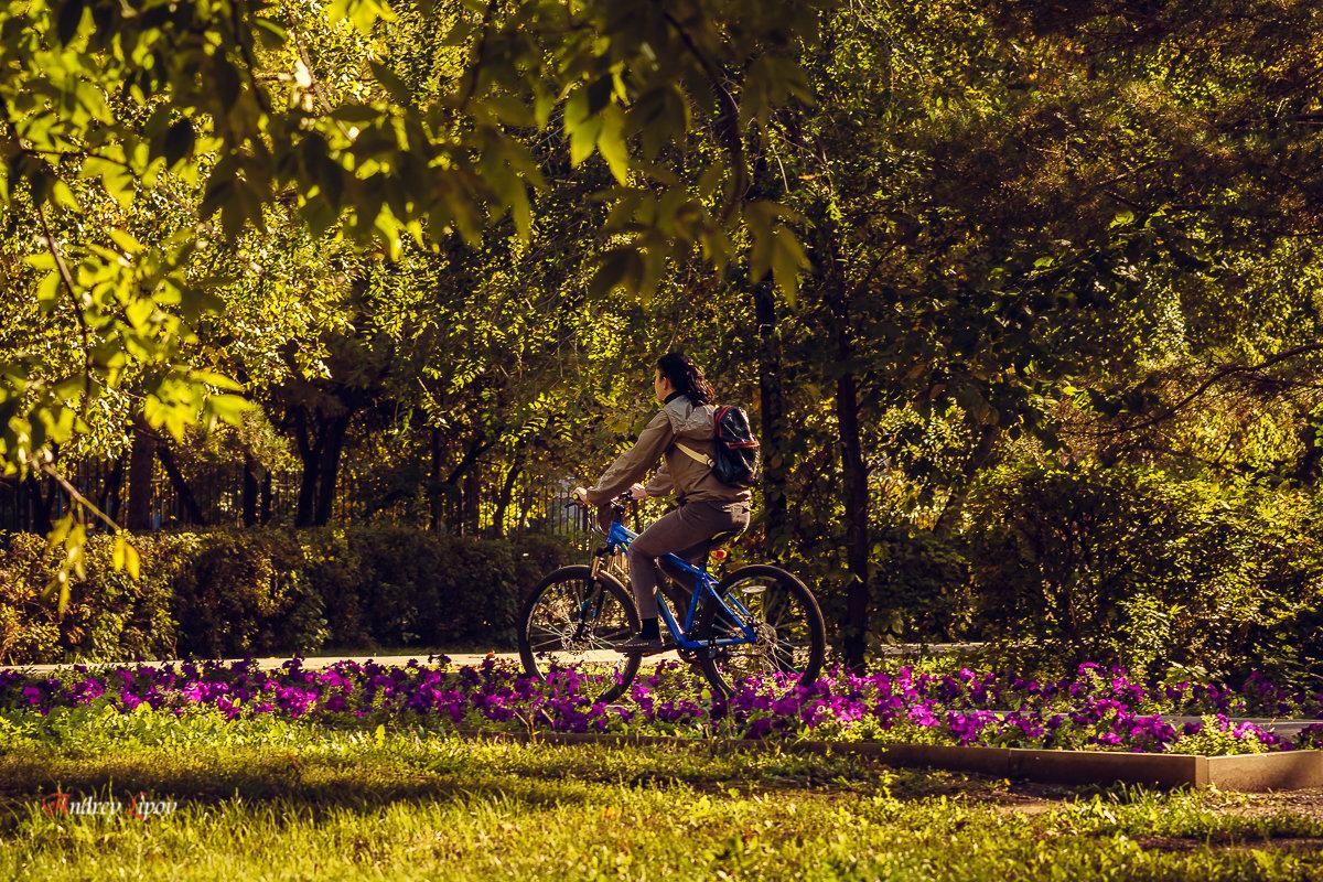 Осень в парке - Андрей Липов