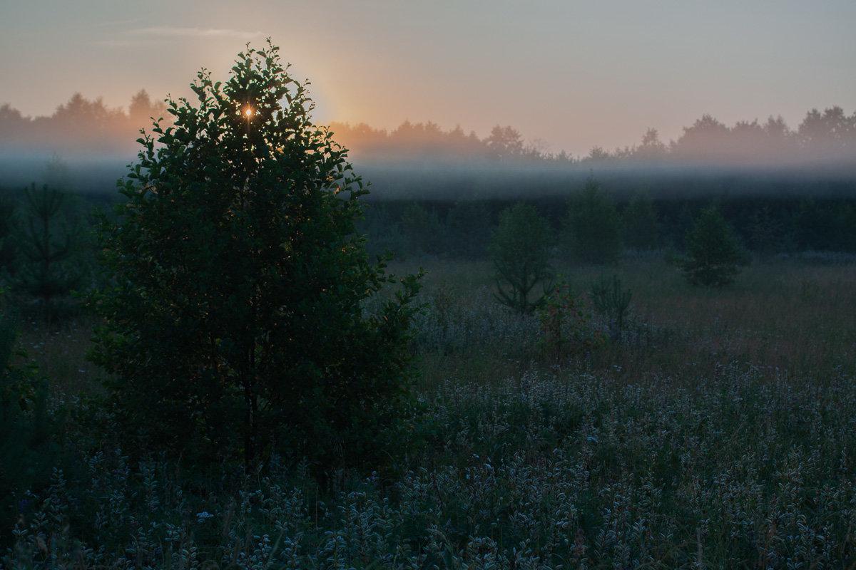 Летнее солнцевставание - Владимир Семёнов