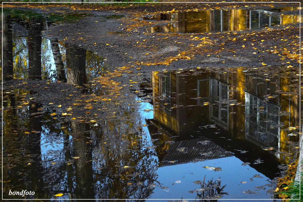 Отражение - Виктор Бондаренко