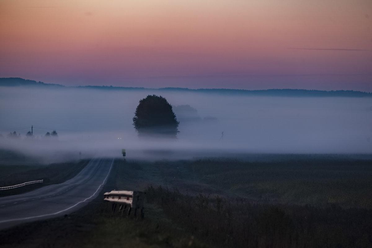Ёжик в тумане - Максимус Кунгурский