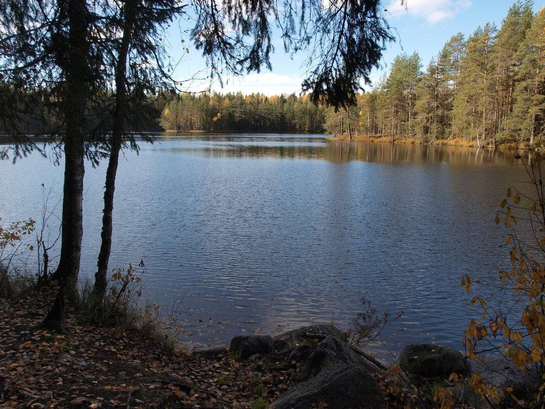 Осенний карельский пейзаж - Михаил Юрьевич