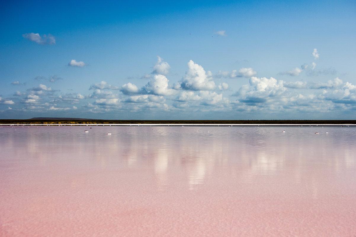 Розовое озеро - Yaroslav Color Цветков