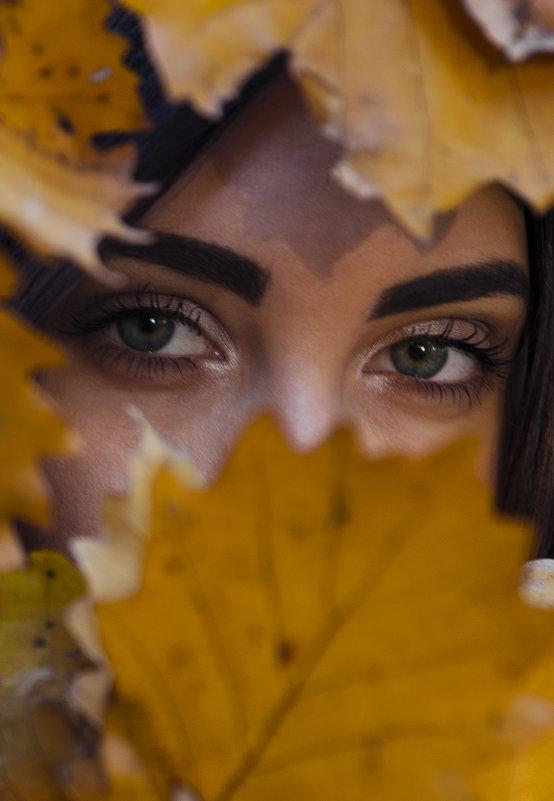 Осень - Эдуард Малец