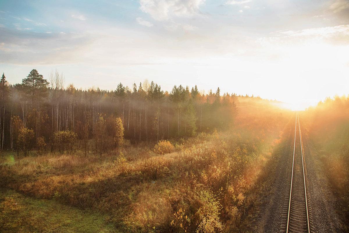 Золотая осень в Архангельске. - Лариса Сафонова