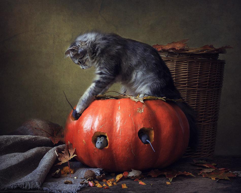Из серии Кошки-мышки - Ирина Приходько