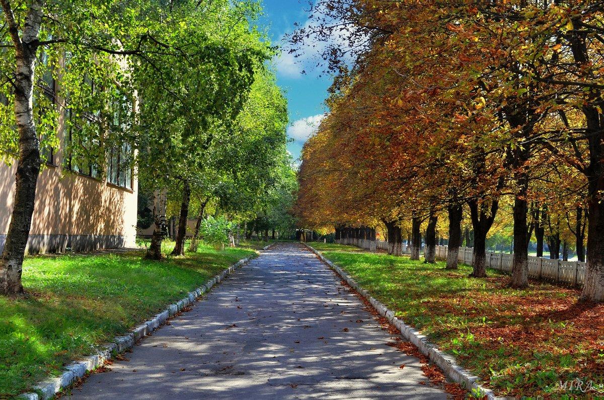 Как встречаются Лето с Осенью... - *MIRA* **