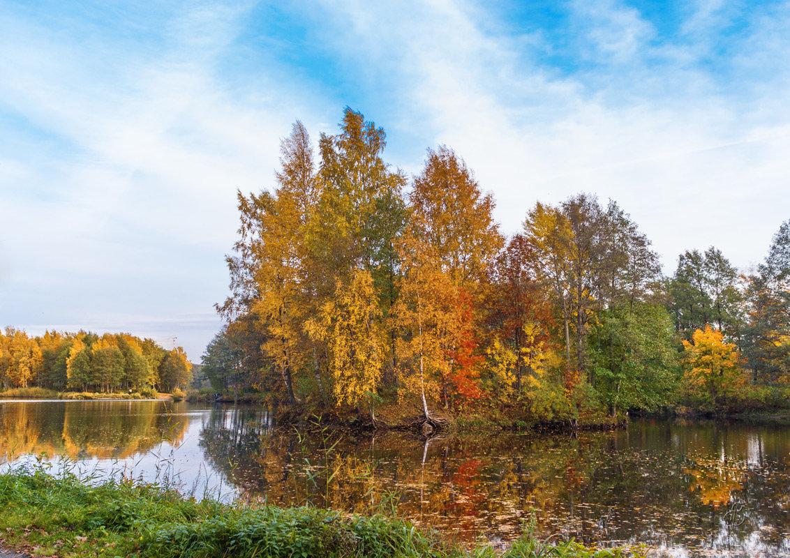 Осени краски - Виталий