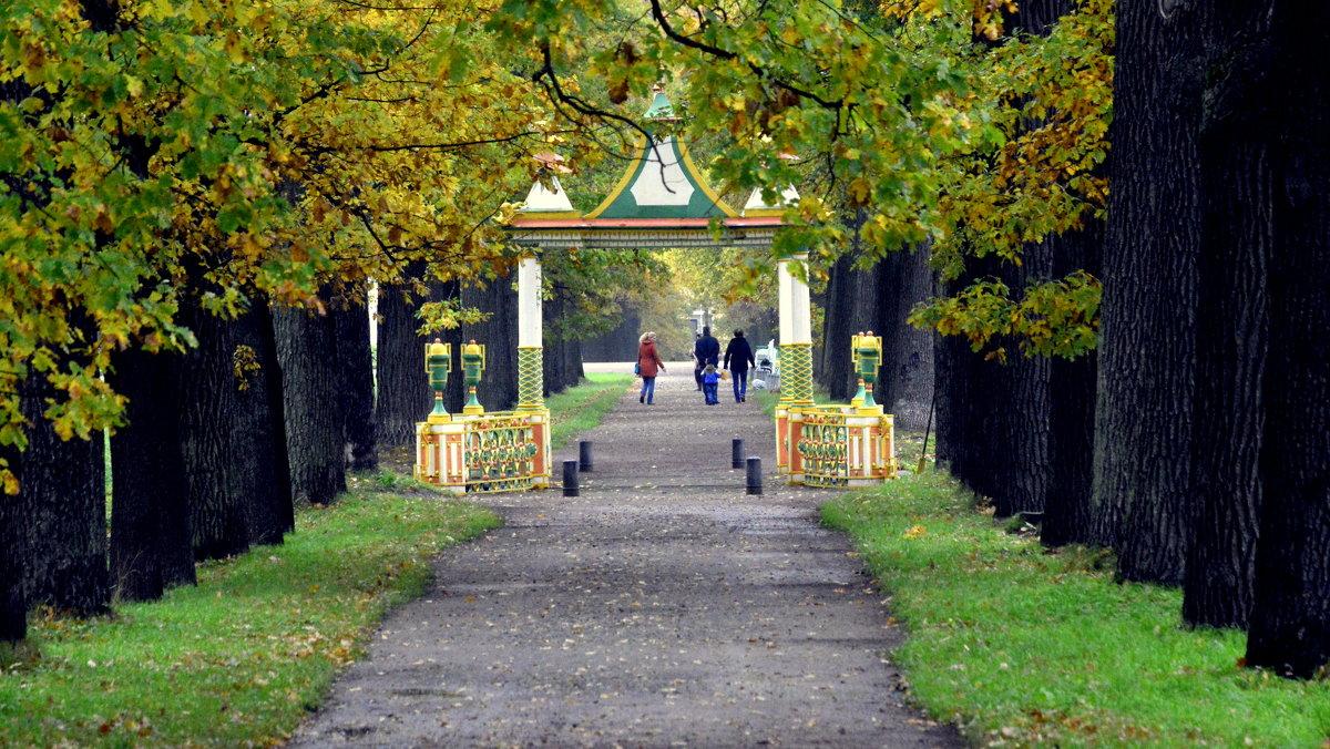 В парке осенью  /15/ Китайский мостик - Сергей