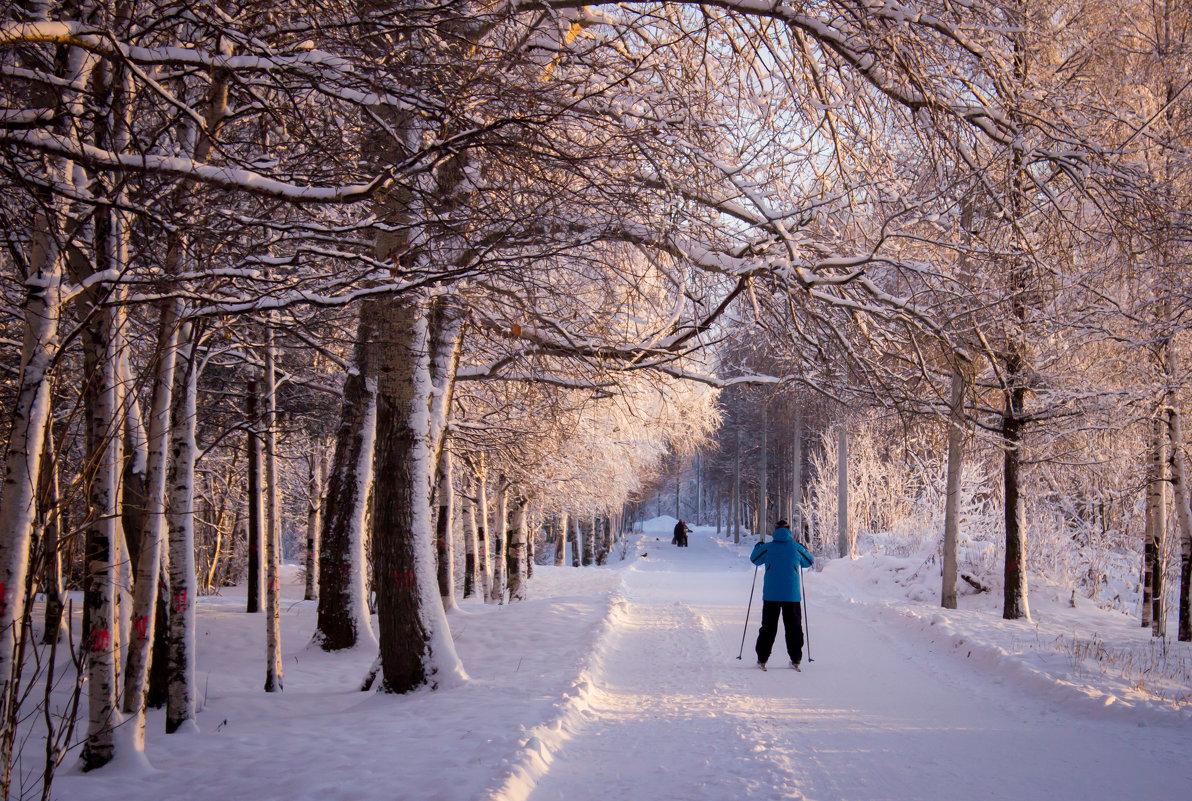 декабрь 2015, лыжник - Ирина Кузина