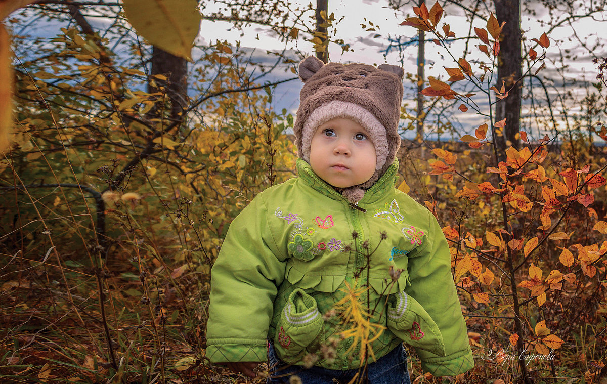 В осеннем саду - Вера Сафонова