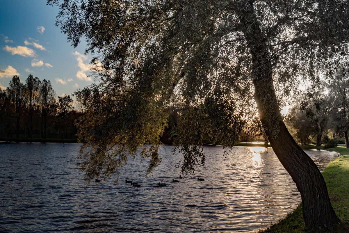Осенний этюд 5 - Юрий Бутусов