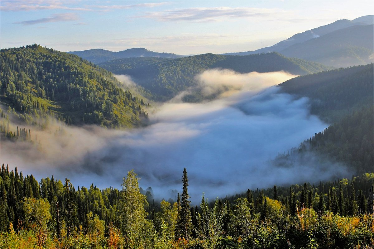 Солнце разбудило туман - Сергей Чиняев