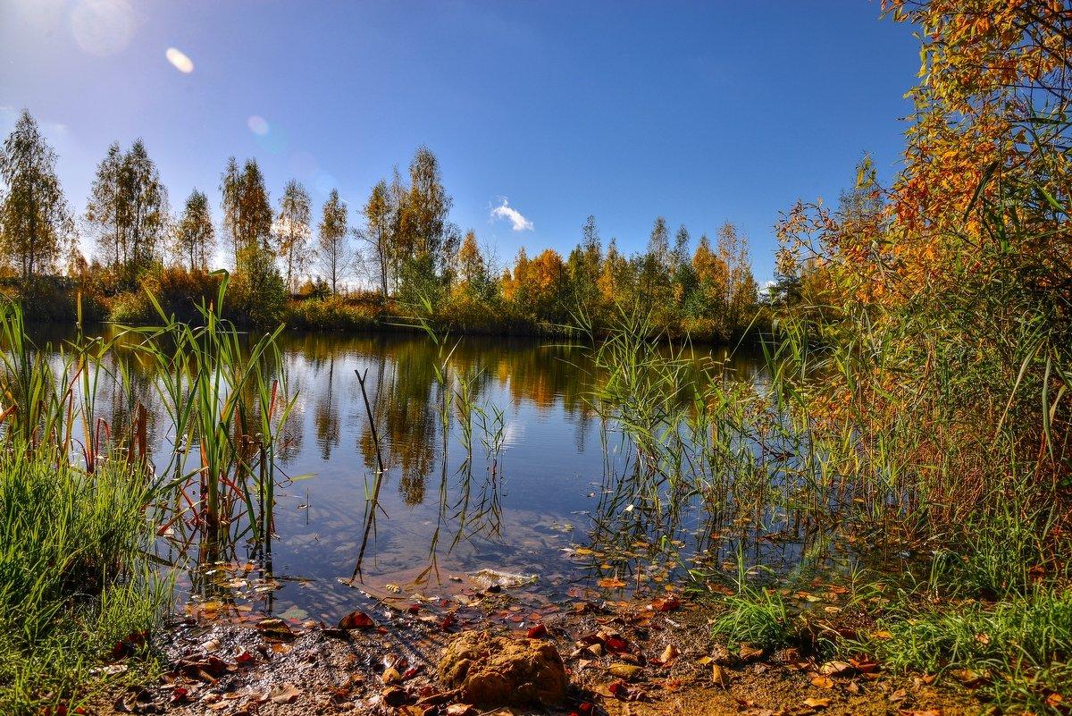 Золотая осень - Юрий Бичеров