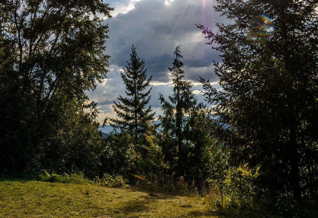 Солнечная поляна - Константин Шабалин