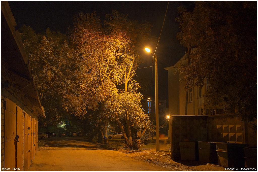 Во дворе - Александр Максимов